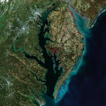 Chesapeake Bay Tidewater Region